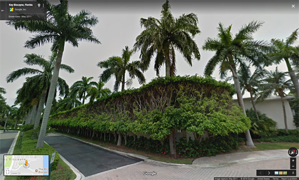 Reference example of Florida landscaping and foliage