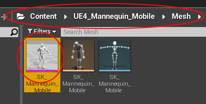 UE4 Mannequin in Content Browser